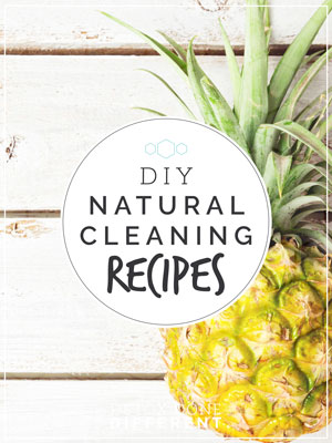 ddd-cleaningrecipes-cover